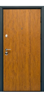 Входные двери Фортнокс Статус S-2 Дуб золотой